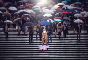 Shibuya cross